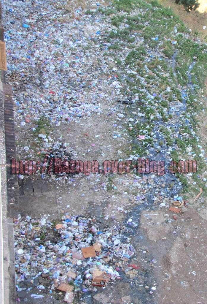http://i21.servimg.com/u/f21/09/01/02/20/img_4117.jpg
