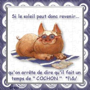cochon23.jpg