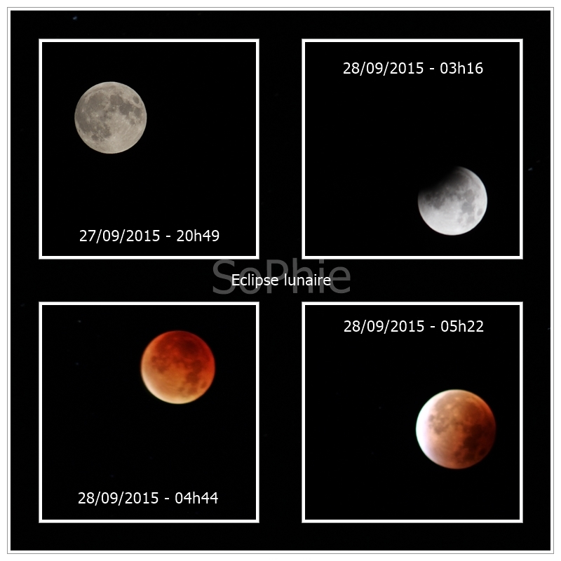 eclips10.jpg