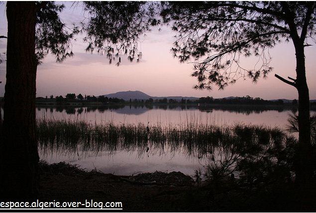 Lac a Sidi Bel Abbes
