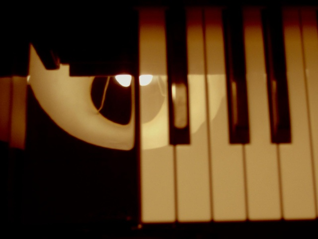 piano_11 dans Photographies