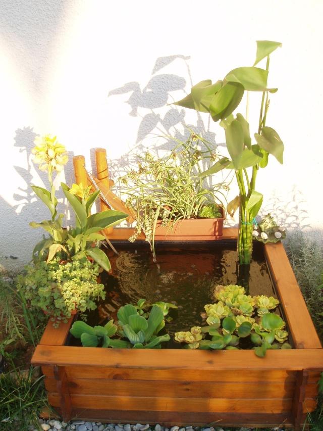 Mon petit bassin japonais - Petit bassin pour jardin ...