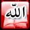 https://i21.servimg.com/u/f21/11/43/95/45/islame10.png