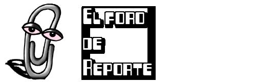 Reporte Foro