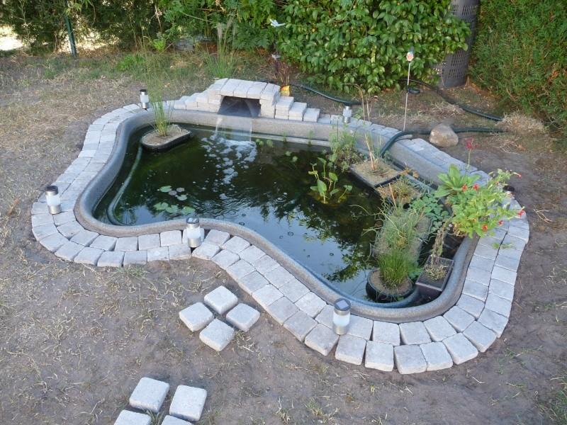 Bassin plantes aquatiques - Bassin aquatique contemporain calais ...