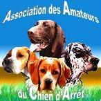ASSOCIATION des AMATEURS du CHIEN D'ARR�T