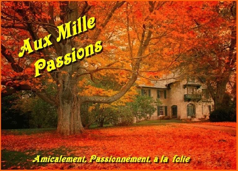 Aux Mille Passions