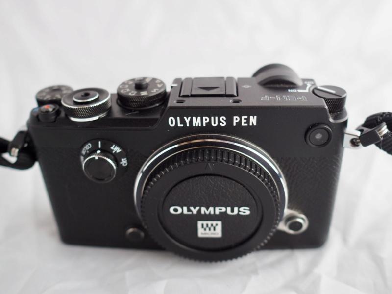 plympu10.jpg