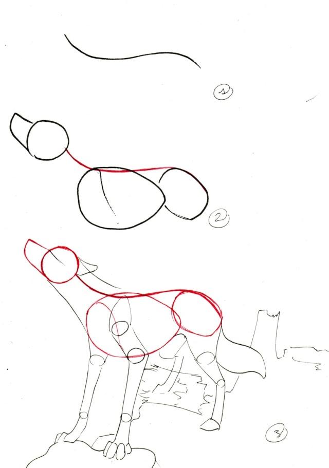 comment dessiner des loups