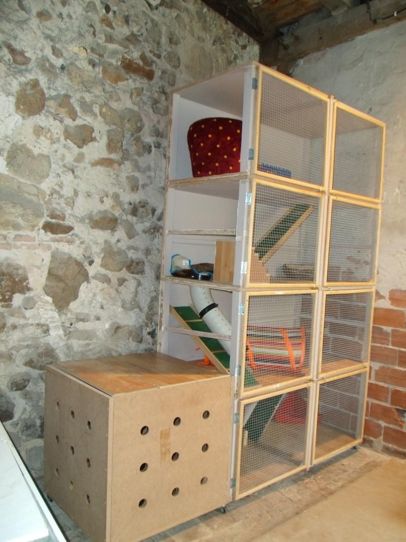 la maison de notre futur furet. Black Bedroom Furniture Sets. Home Design Ideas