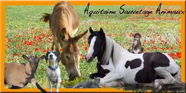 Aquitaine Sauvetage Animaux