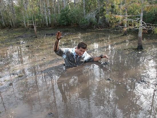 Bear Grylls Edward Michael Grylls man vs wild seul face à la nature everglades alligator serpent à sonnette diamantin marais survie en milieux hostiles siphon de boue de marais