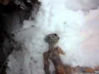 Ufologie forum paranormal extraterrestre Russie Sibérie explosion OVNI rencontre du troisième type cadavre dépouille neige Irkoutsk vidéo avril 2011