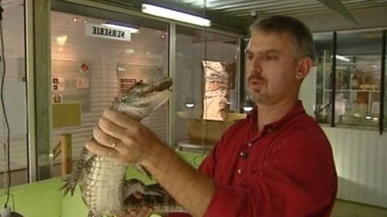 zoologie reptile saurien pierrelatte drôme ferme aux crocodiles fugitif alligator de chine gendarmerie dégrisement