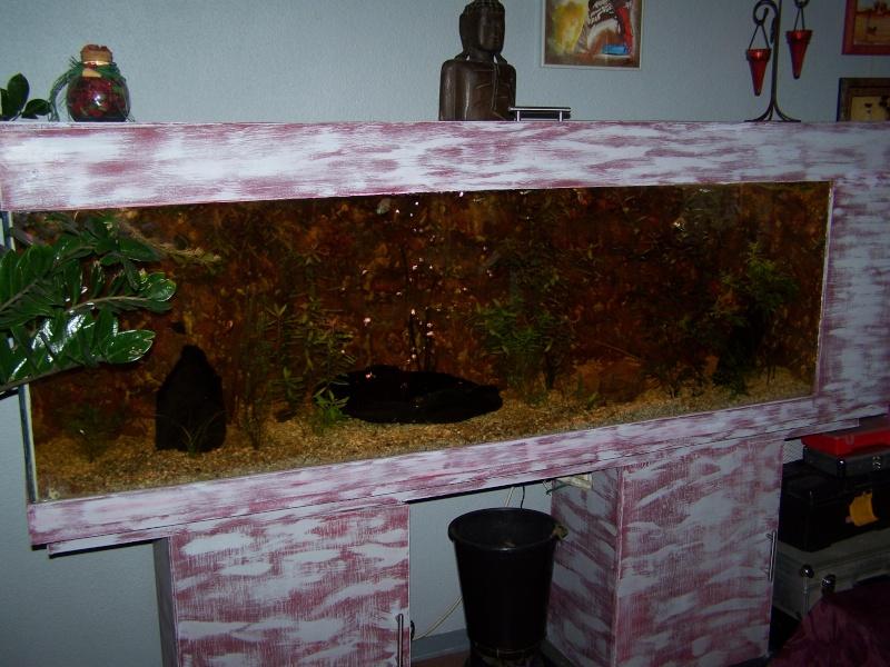 Aquarium 600l quip meuble vendu for Aquarium 600l