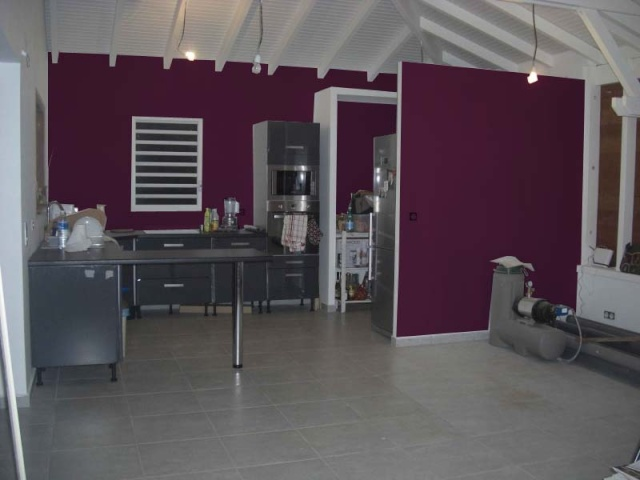 Couleurs de ma future cuisine forum d co for Cuisine mur aubergine