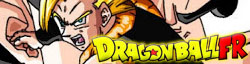 Dragon Ball FR