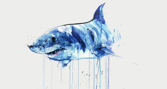 ♛. the Shark-revolution