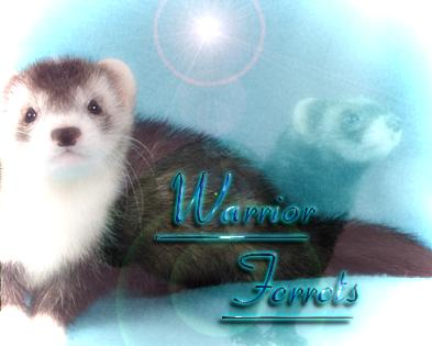 Warrior Ferrets