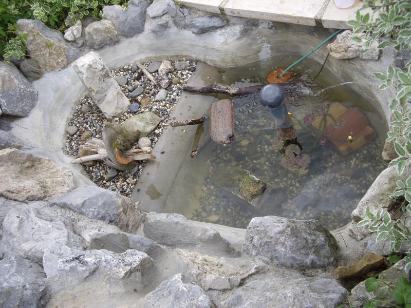 D coration bassin pour tortue aquatique grenoble 32 for Bassin exterieur pour tortue de floride