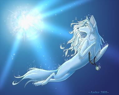 A Bautiful Snow White Shewolf With Sky Blue Eyes Has Been Longng To E Alpha Female
