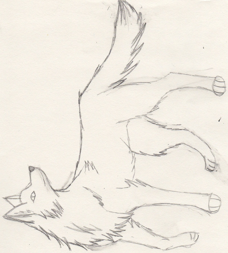Dessin et colo de fa 39 - Dessin loup facile ...