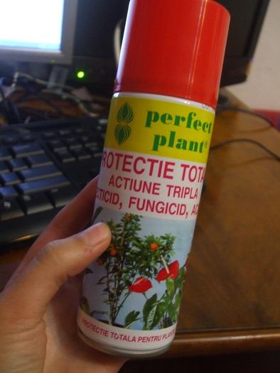 help pucerons blancs tuent mes plantes. Black Bedroom Furniture Sets. Home Design Ideas