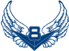 Blue Wings Team