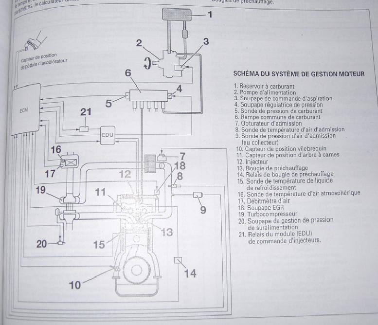 obturer la vanne egr page 3. Black Bedroom Furniture Sets. Home Design Ideas