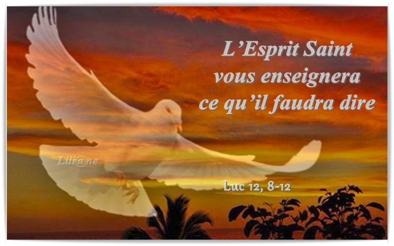 L'Esprit Saint vous enseignera ce qu'il faudra dire