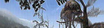 http://i21.servimg.com/u/f21/15/96/88/11/scroll14.jpg