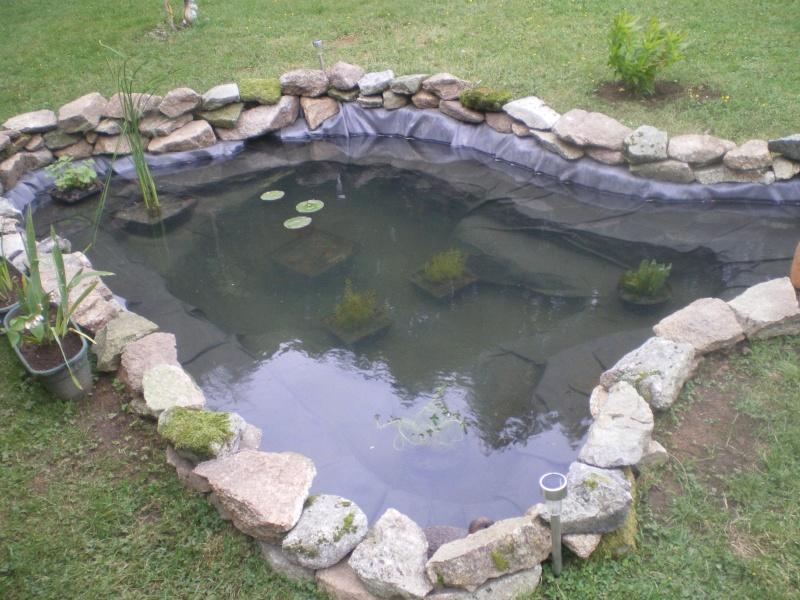 D co bassin exterieur pour tortue colombes 11 - Bassin moderne exterieur calais ...