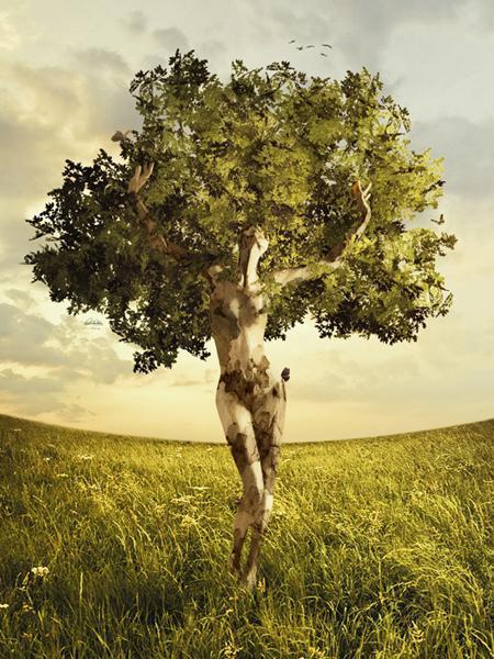 Comme un arbre dans POESIES, TEXTES femme-10
