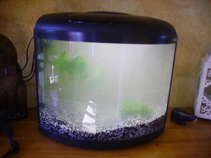 mon aquarium 40 litres aquarium40l. Black Bedroom Furniture Sets. Home Design Ideas