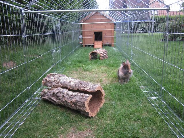 Installation assez grande conseils pour l 39 am nagement for Enclos exterieur pour lapin