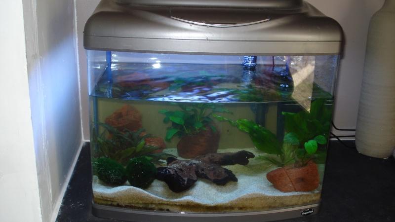 meuble pour aquarium 400 litres. Black Bedroom Furniture Sets. Home Design Ideas