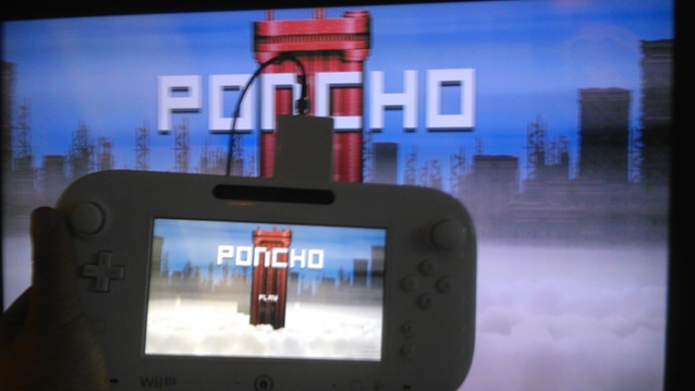 poncho14.jpg