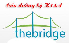 Các môn chuyên ngành xây dựng cầu