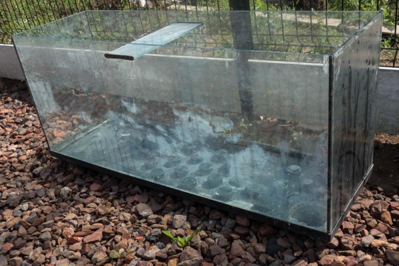 Vend aquariums pour fishroom for Vend aquarium