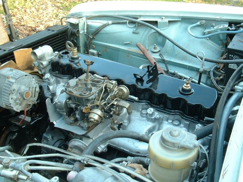 jaguar36.jpg