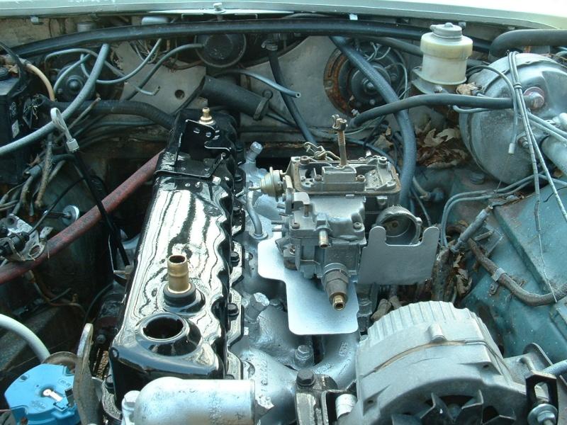 jaguar37.jpg