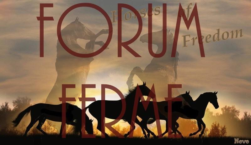 Horses of Freedom