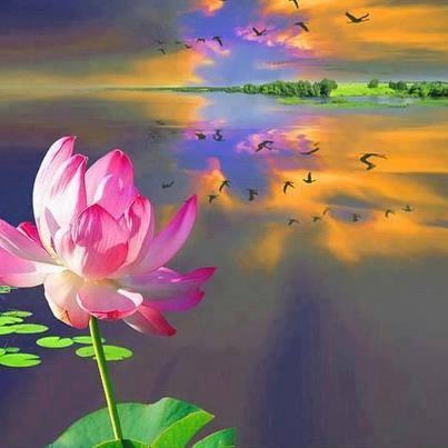 medita11.jpg