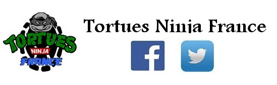 Tortues Ninja France