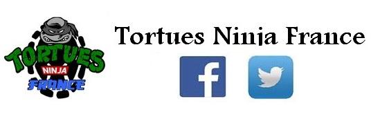 Tortues Ninja France