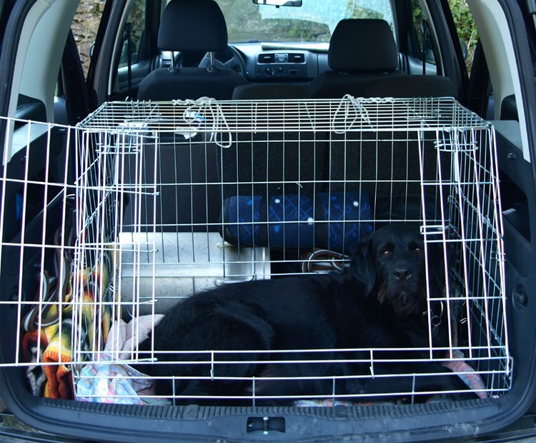 petite voiture avec un grand coffre. Black Bedroom Furniture Sets. Home Design Ideas