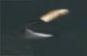 serpe11.jpg