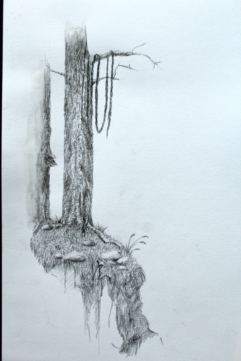Croquis décor forestier