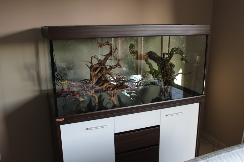 mon aquarium 400 litres vid o page 5. Black Bedroom Furniture Sets. Home Design Ideas