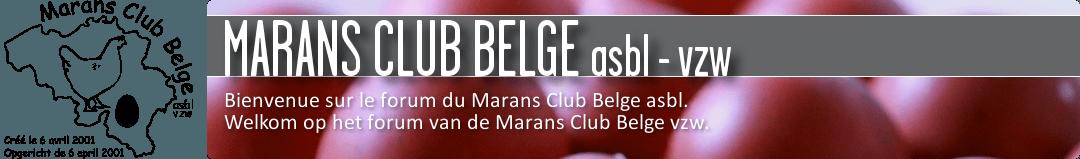 FORUM - MARANS CLUB BELGE asbl-vzw